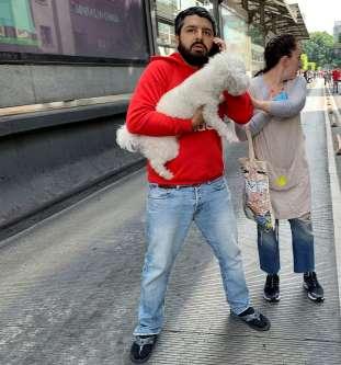 Sismo de 7.5 grados sorprende en la Ciudad de México