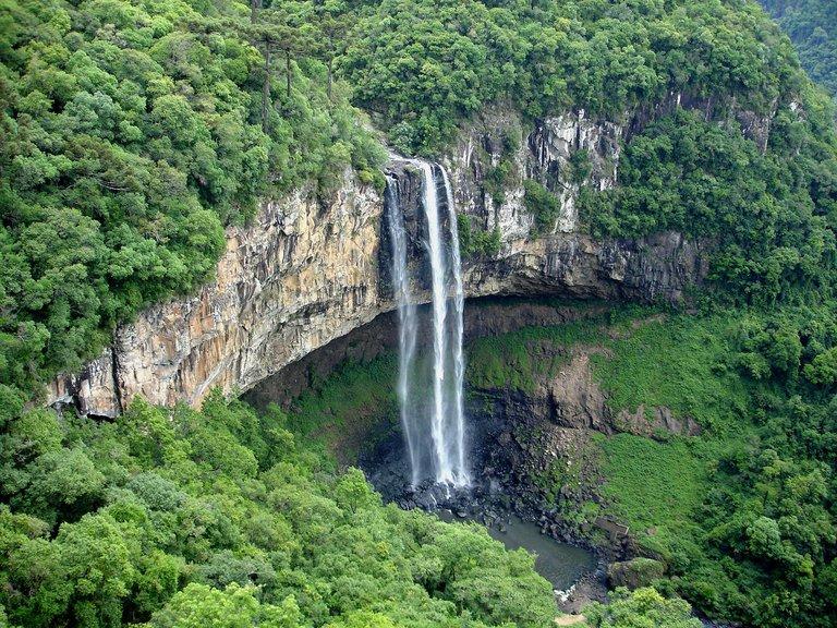 Medio ambiente: América Latina lanza un plan para restaurar los ecosistemas dañados.
